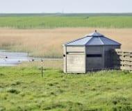 Vogelkijkhut Polder Breebaart - Termunten